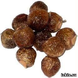 Что такое мыльные орехи и как их использовать?